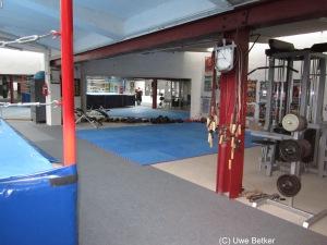Freudenreich Gym (6)
